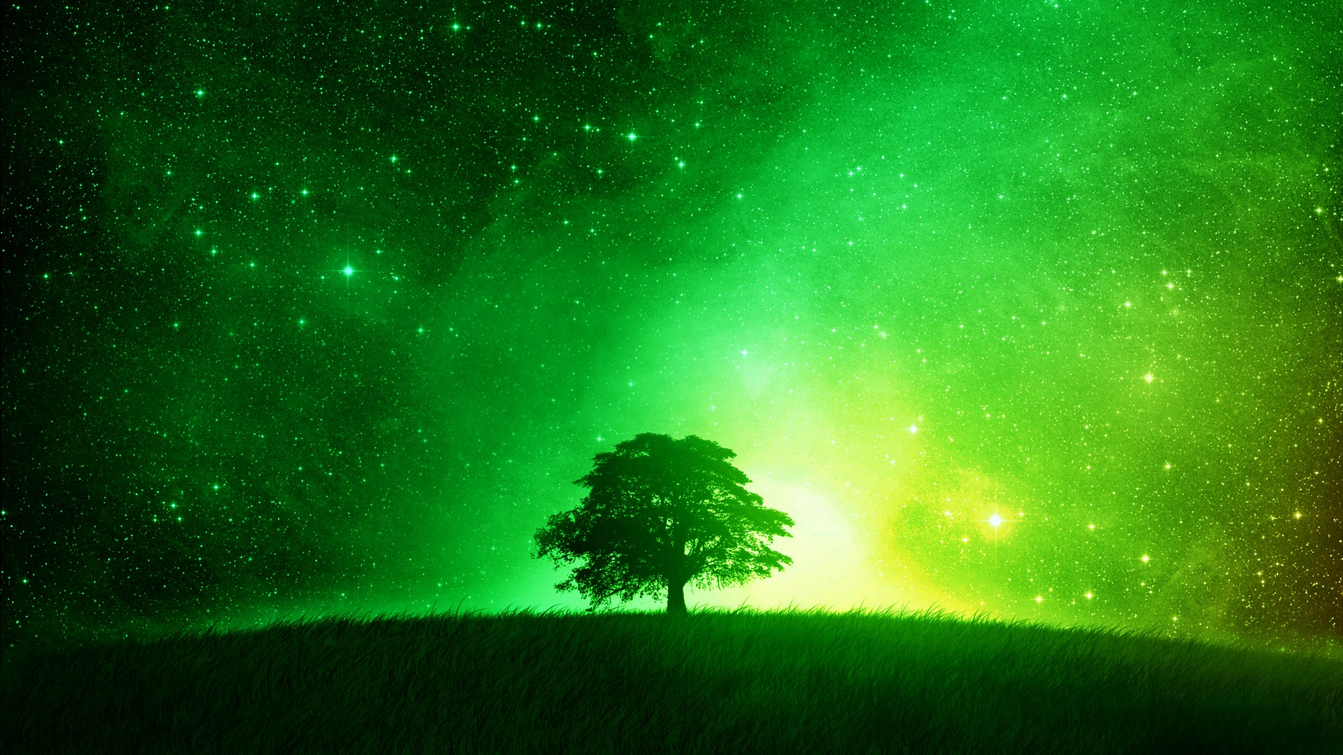 HD Lime Green Backgrounds Amazing Images Background Photos 1080p 1920x1080