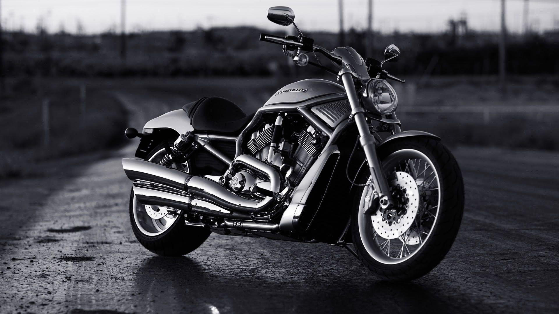 Harley Davidson V Rod Muscle Wallpapers 1920x1080