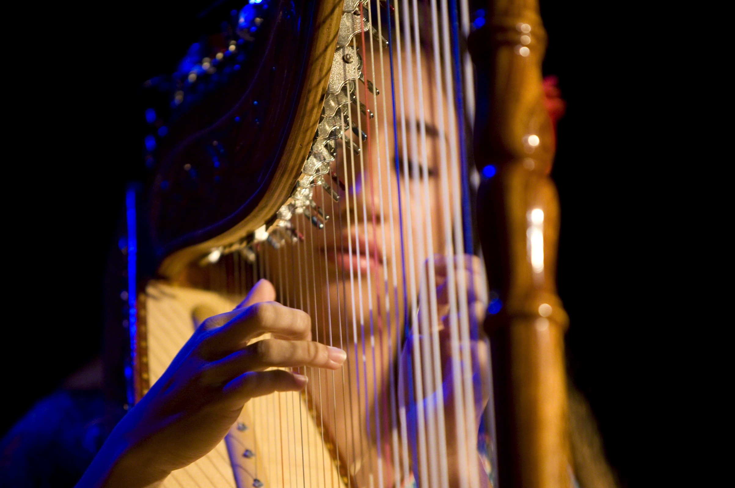 Young Woman on the Harp 2406x1600