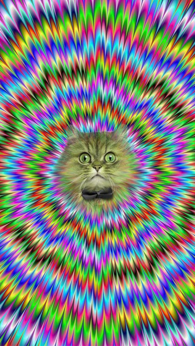 Psychedelic Cat iPhone 5 Wallpaper 640x1136 640x1136