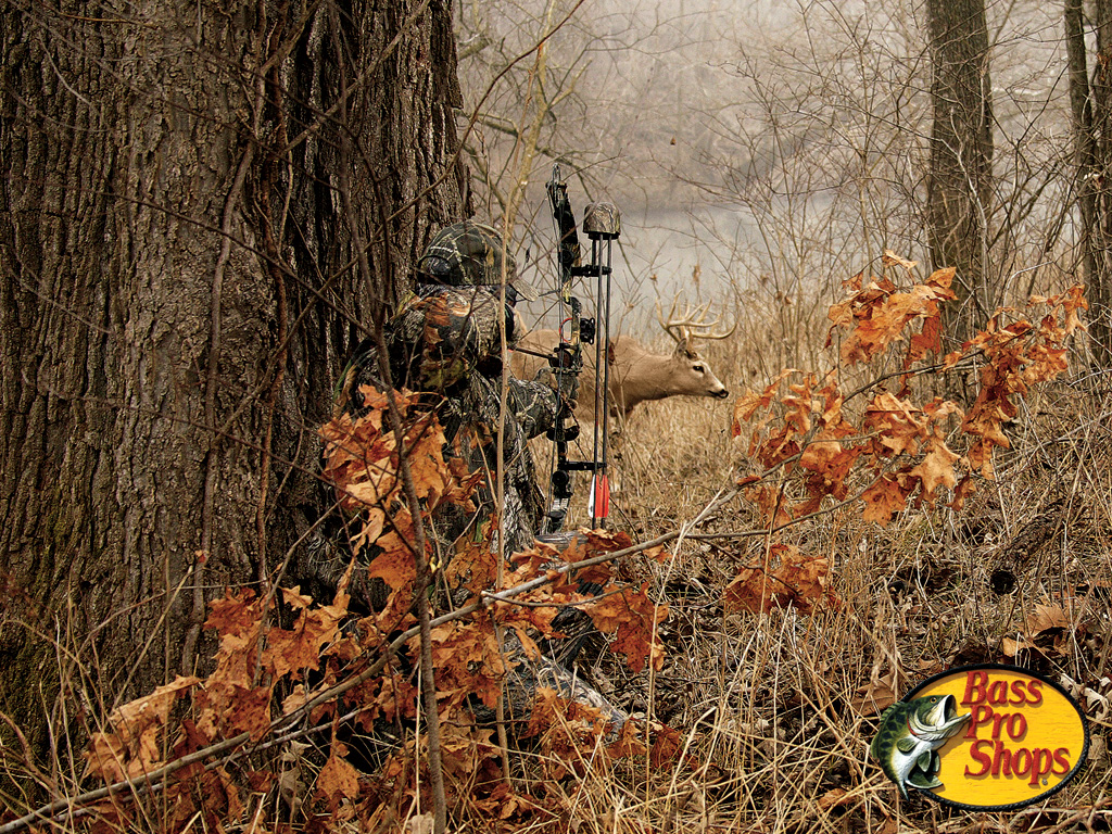 Displaying 19 Images For   Deer Hunting Camo Backgrounds 1024x768