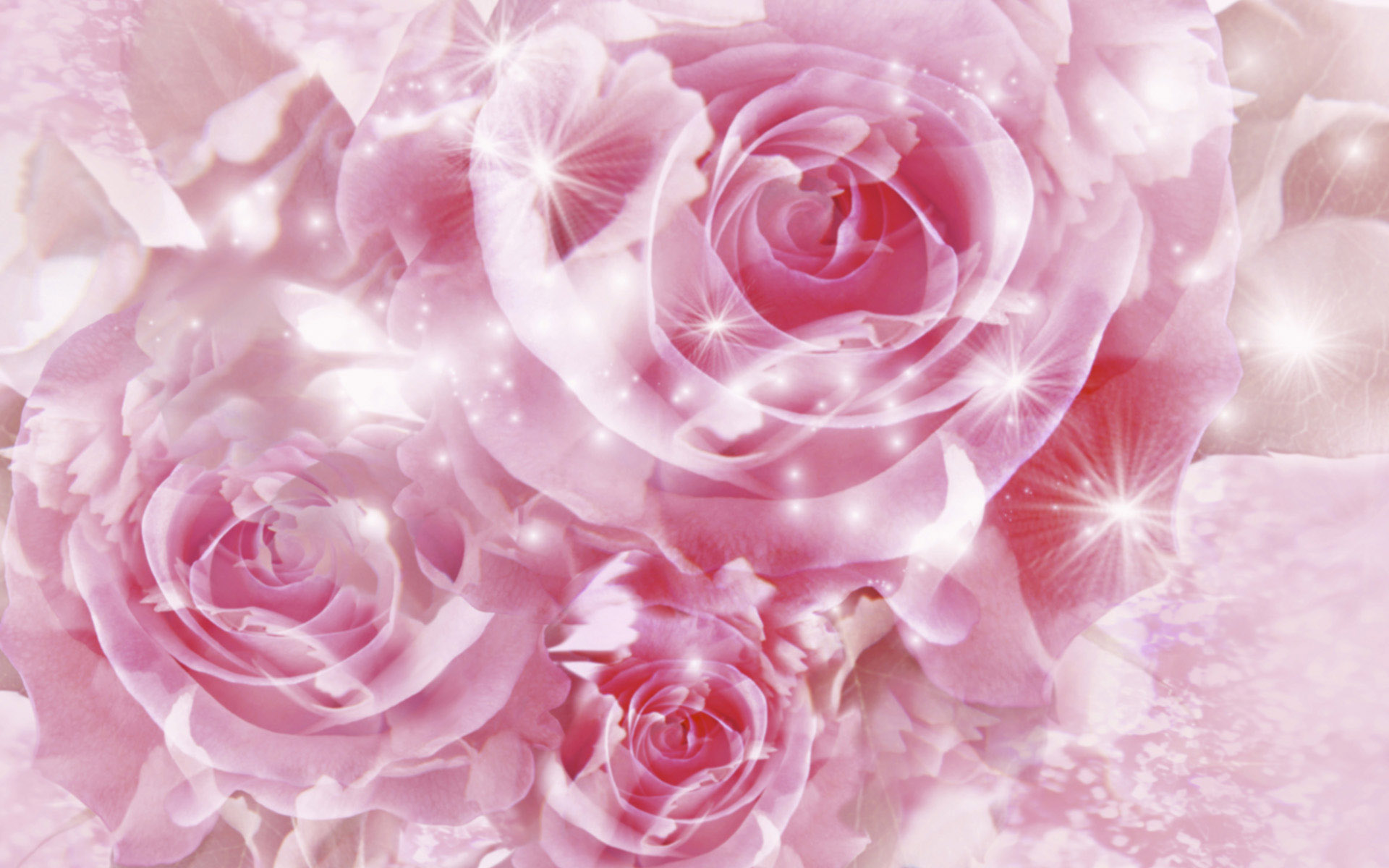 Pretty Pink Roses Wallpaper   Pink Color Photo 34590746 1920x1200