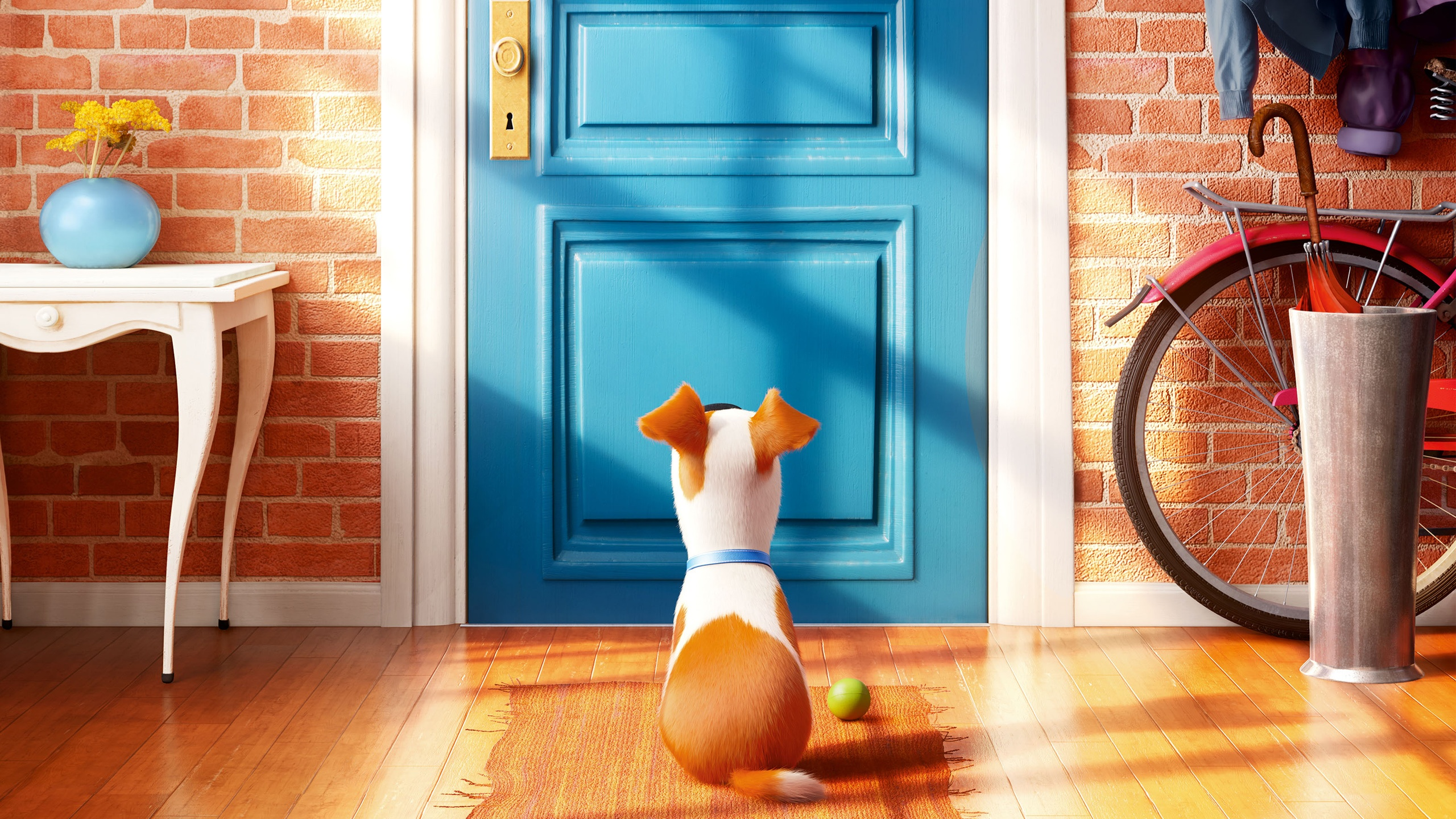 The Secret Life of Pets Movie Wallpapers HD Wallpapers 2560x1440