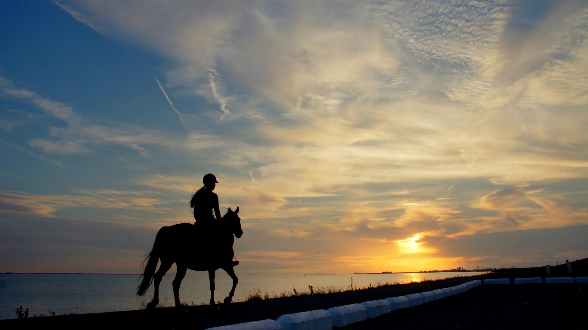 Download wallpaper 1920x1080 horseback rider girl silhouette 1920x1080