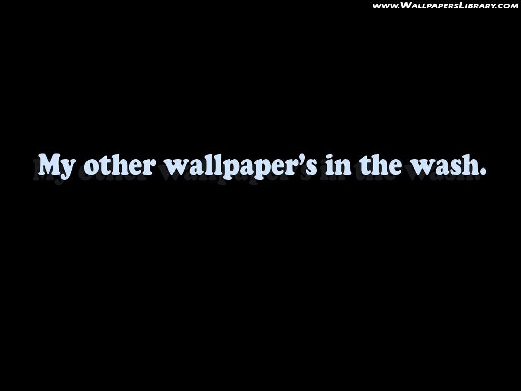 Funny Desktop Wallpapers 1024x768