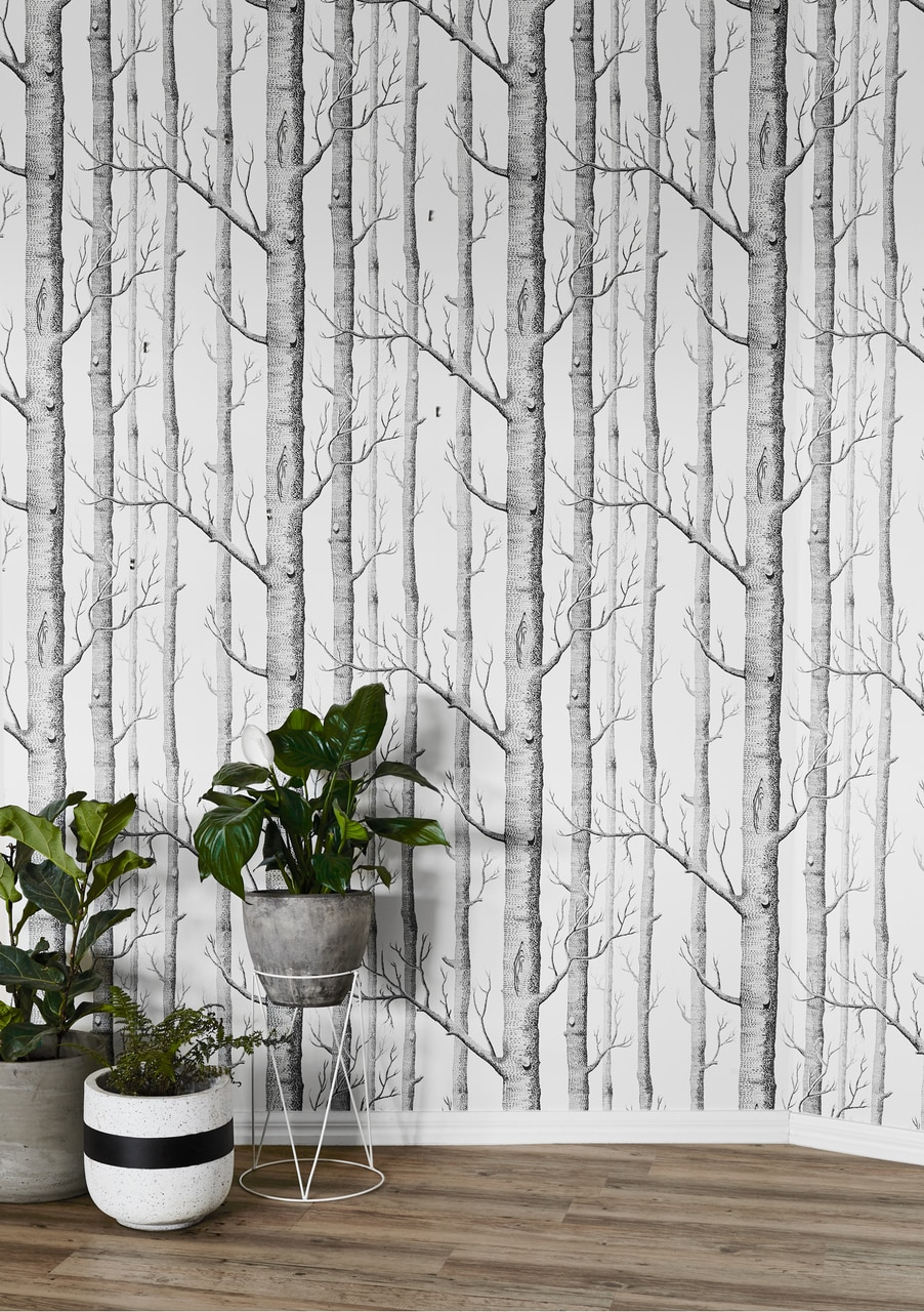 cole and son woods wallpaper 6912147 902x1280