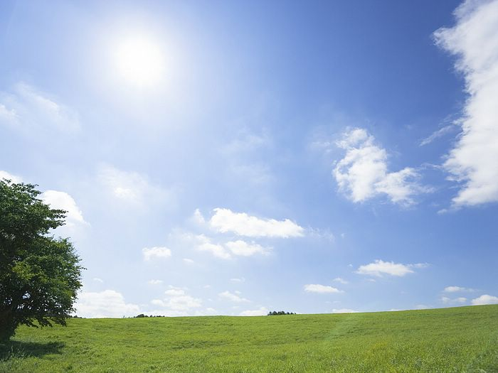 under sky photo 046 desktop wallpapers 2 green grassland under sky 700x525