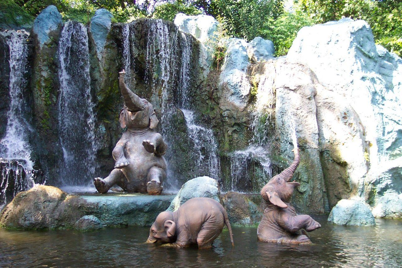 Cute Baby Elephant Wallpaper Cute baby elephant walking 1280x853
