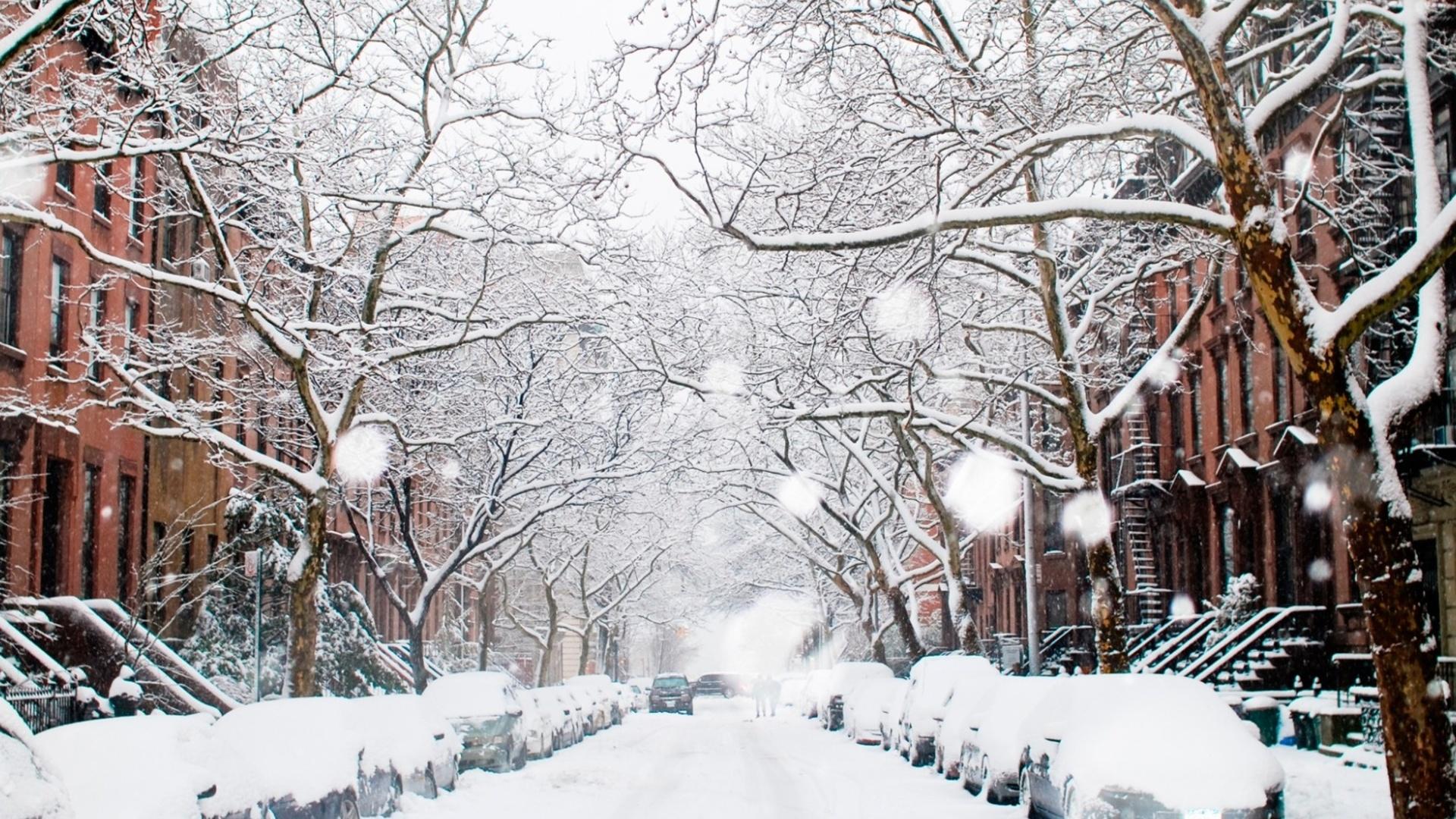winter 1920x1080