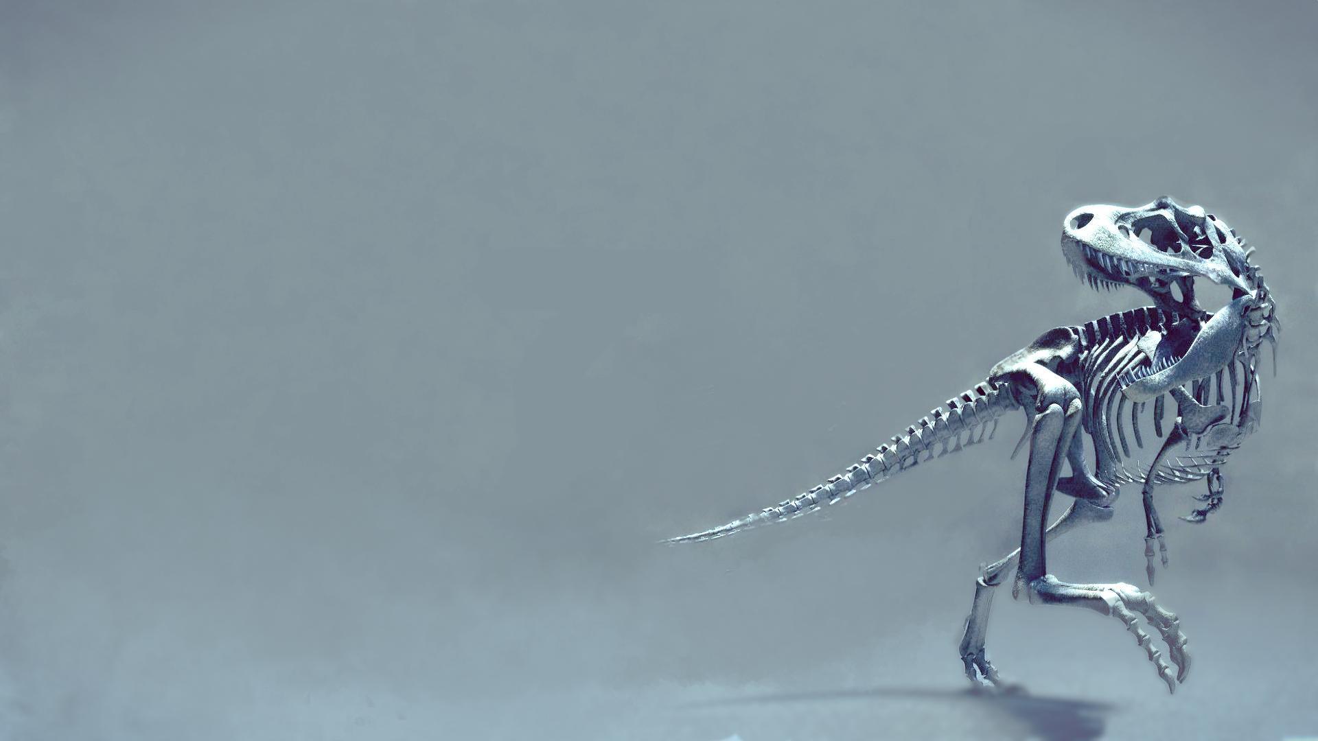 скелет  № 703160 загрузить