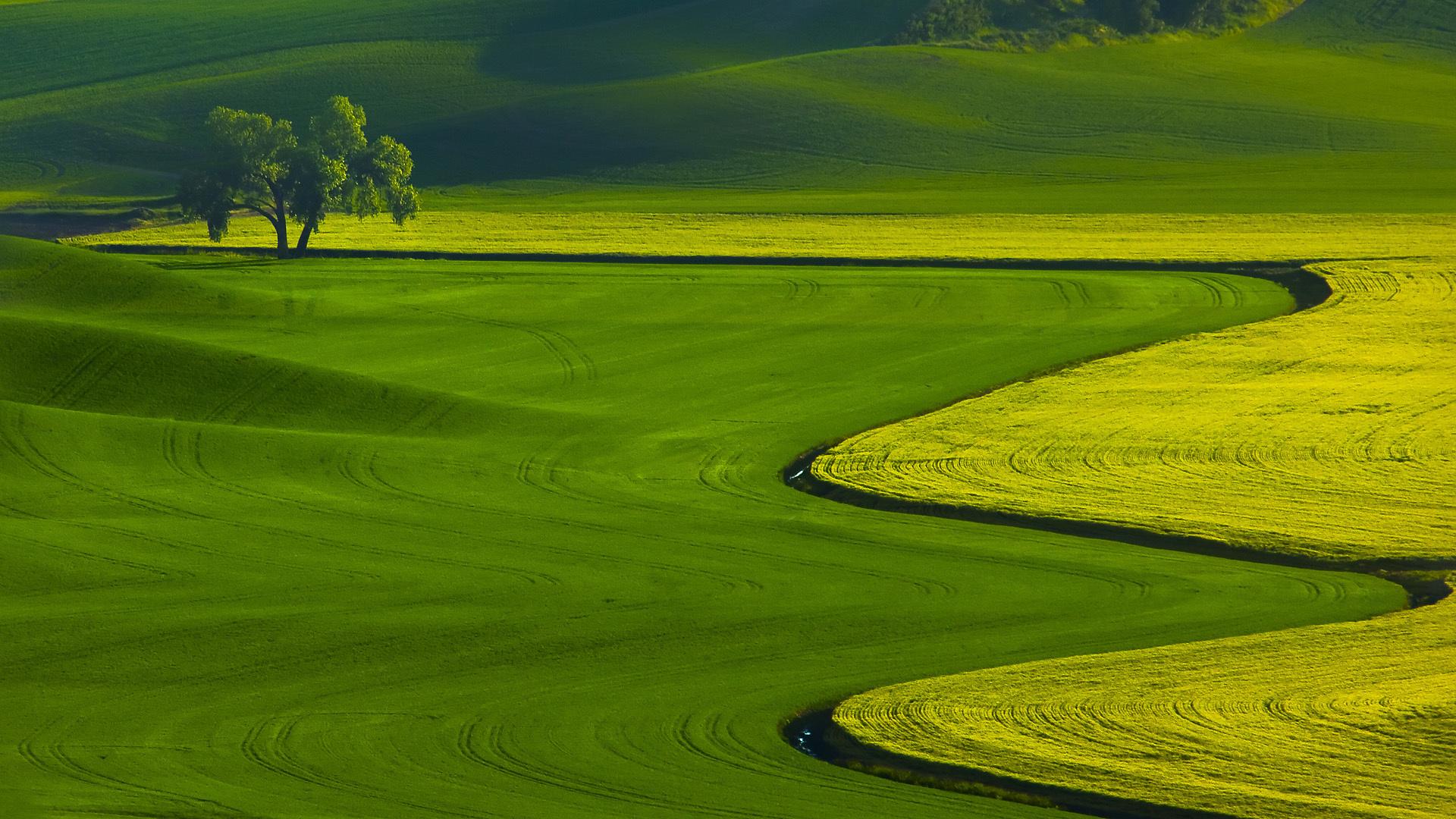 Golf High Definition Wallpaper 1920x1080 1920x1080