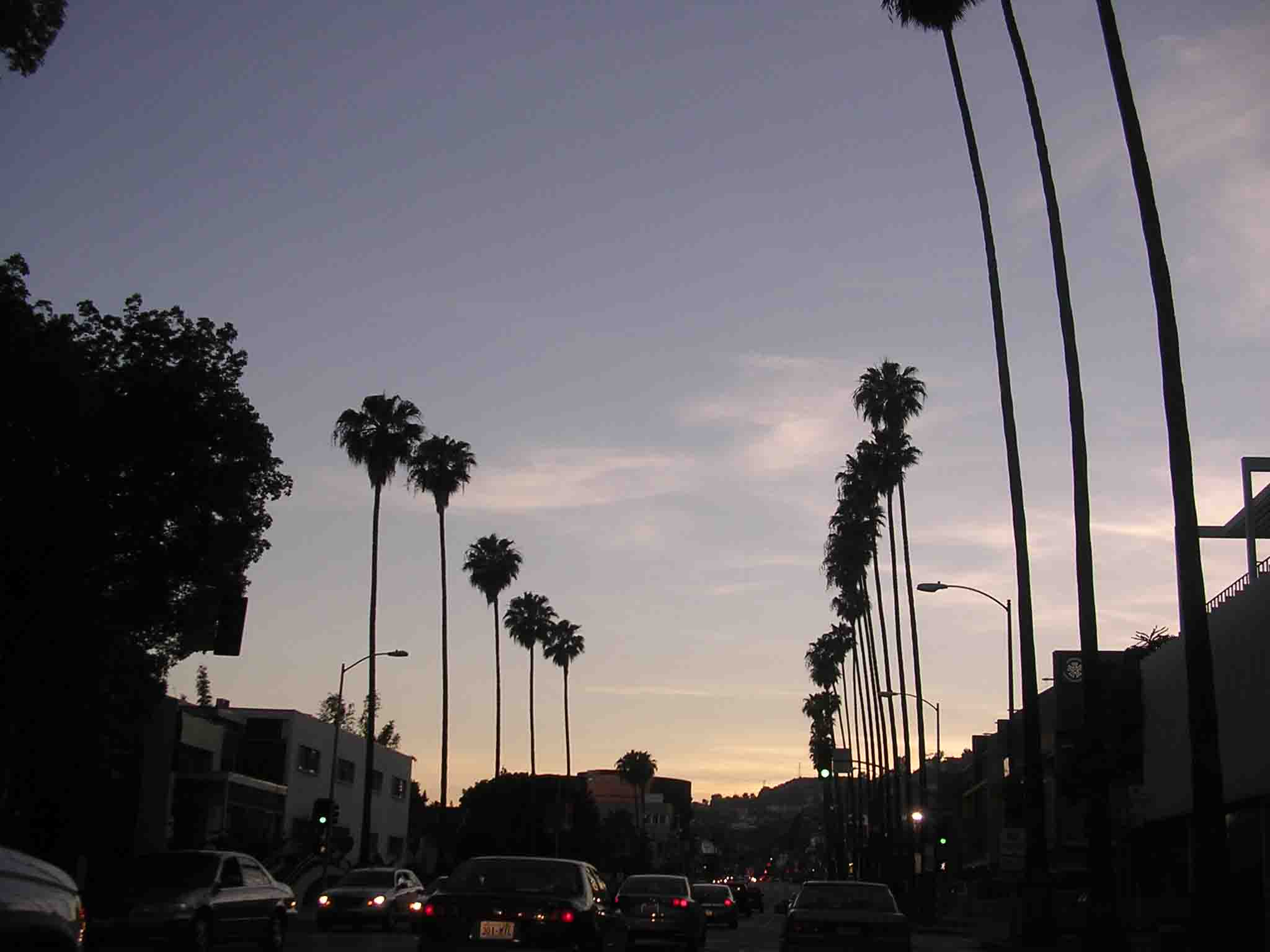Sunset Blvd 18610 Hd Wallpapers In Movies Imagescicom 2048x1536