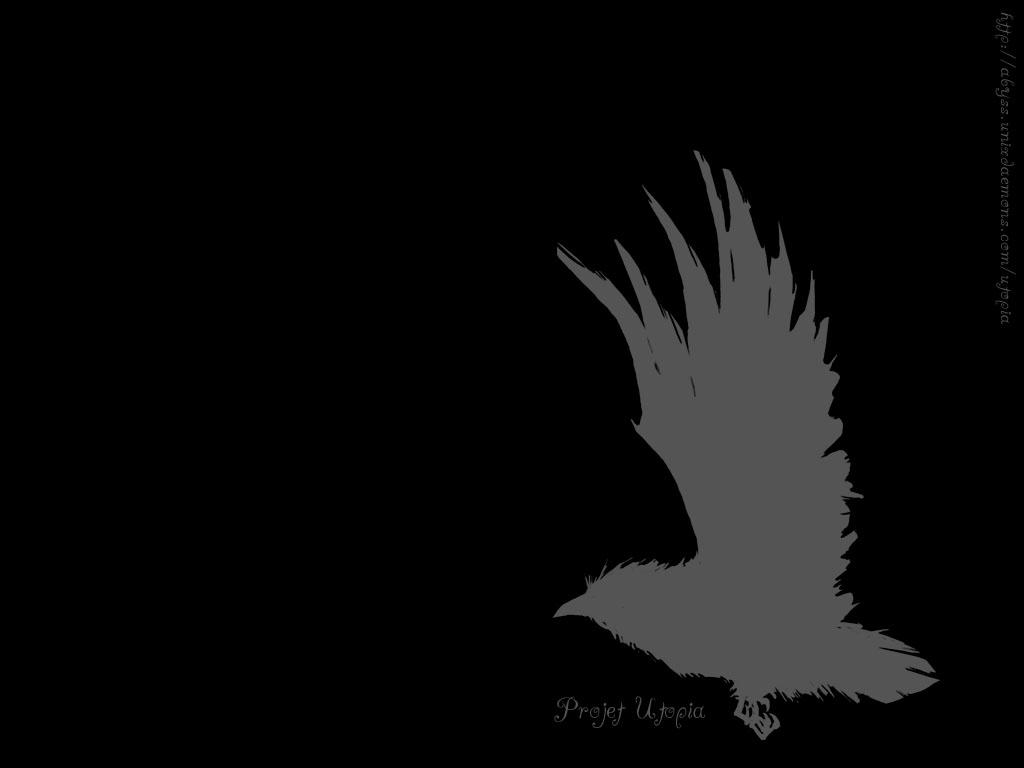 Black wallpaper for desktop 1024x768