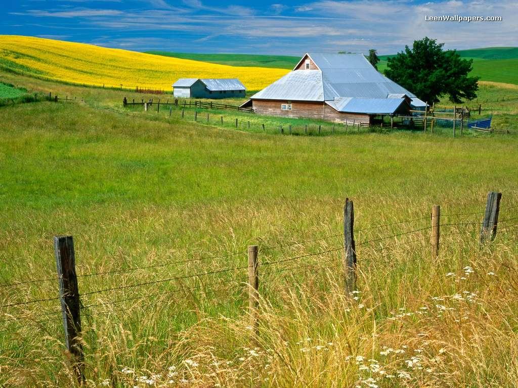 Imelda Mcconnell farm hd 1024x768