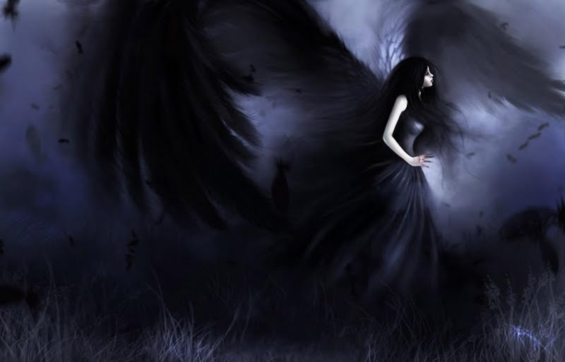 High resolution black angel desktoplaptop wallpaper Listed in 800x513