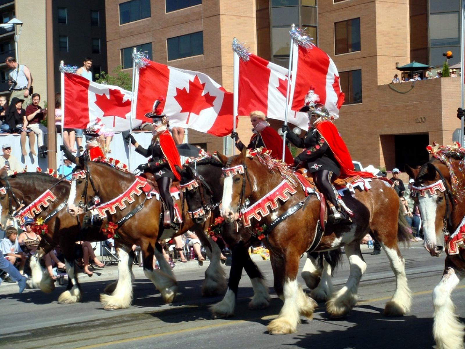 Calgary stampede parade HQ WALLPAPER   149933 1600x1200