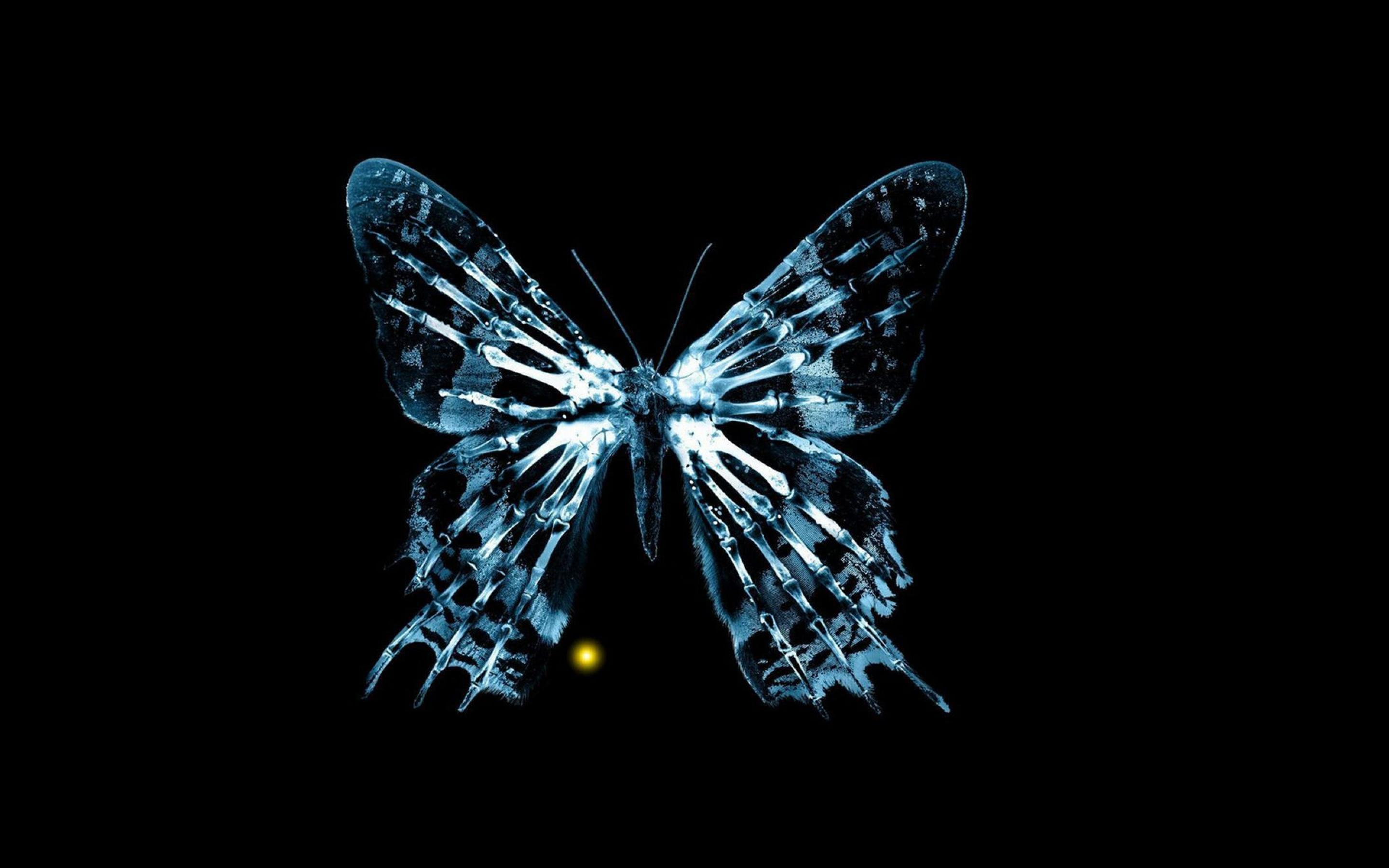 Cool Butterfly Wallpapers 2880x1800
