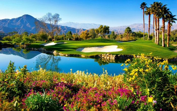 Palm Springs Golf   Indian Tree Palm Springs Golf Grass Nice Grass 700x437
