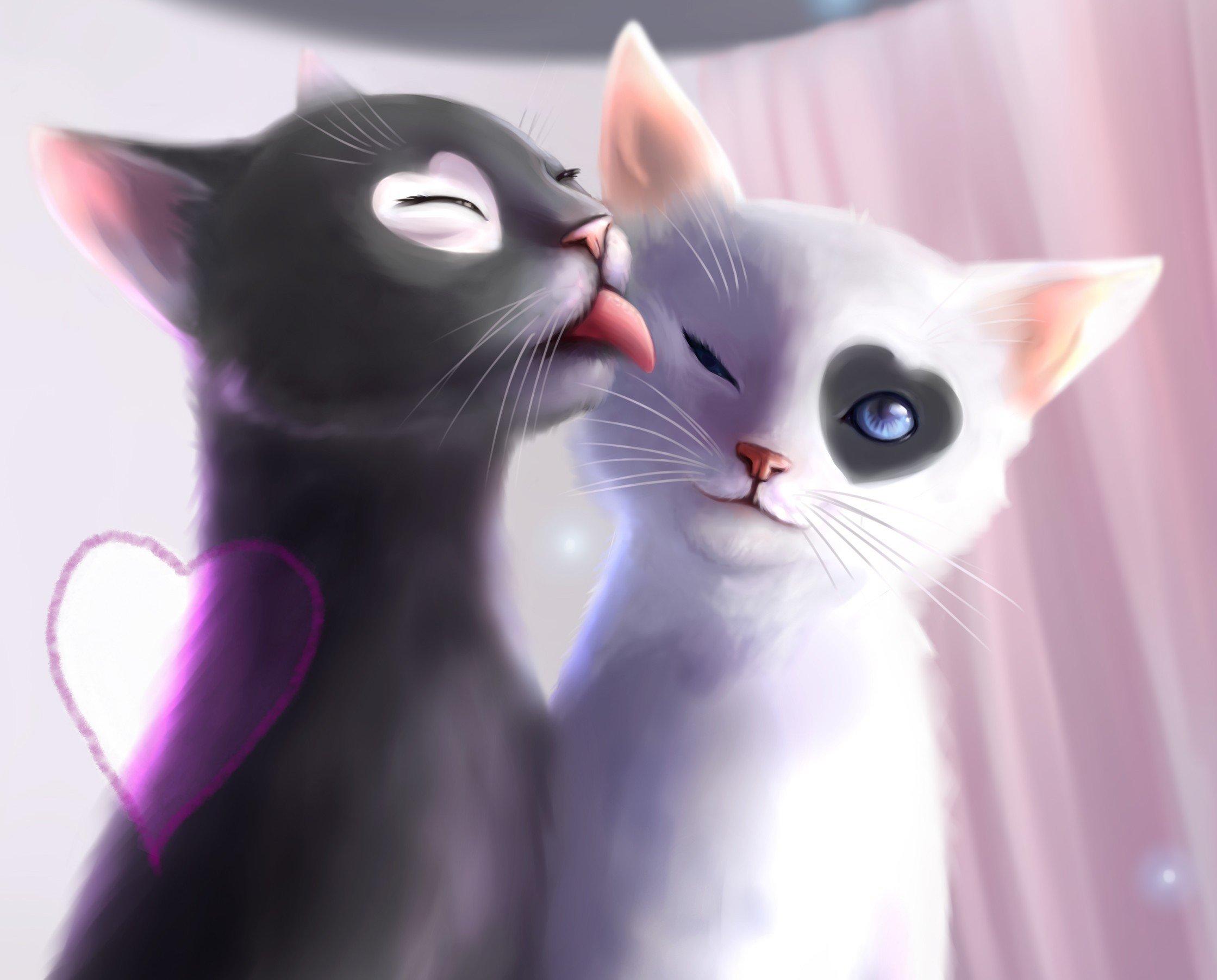 Love Wallpaper Drawing : cute cat Drawings Wallpaper - WallpaperSafari
