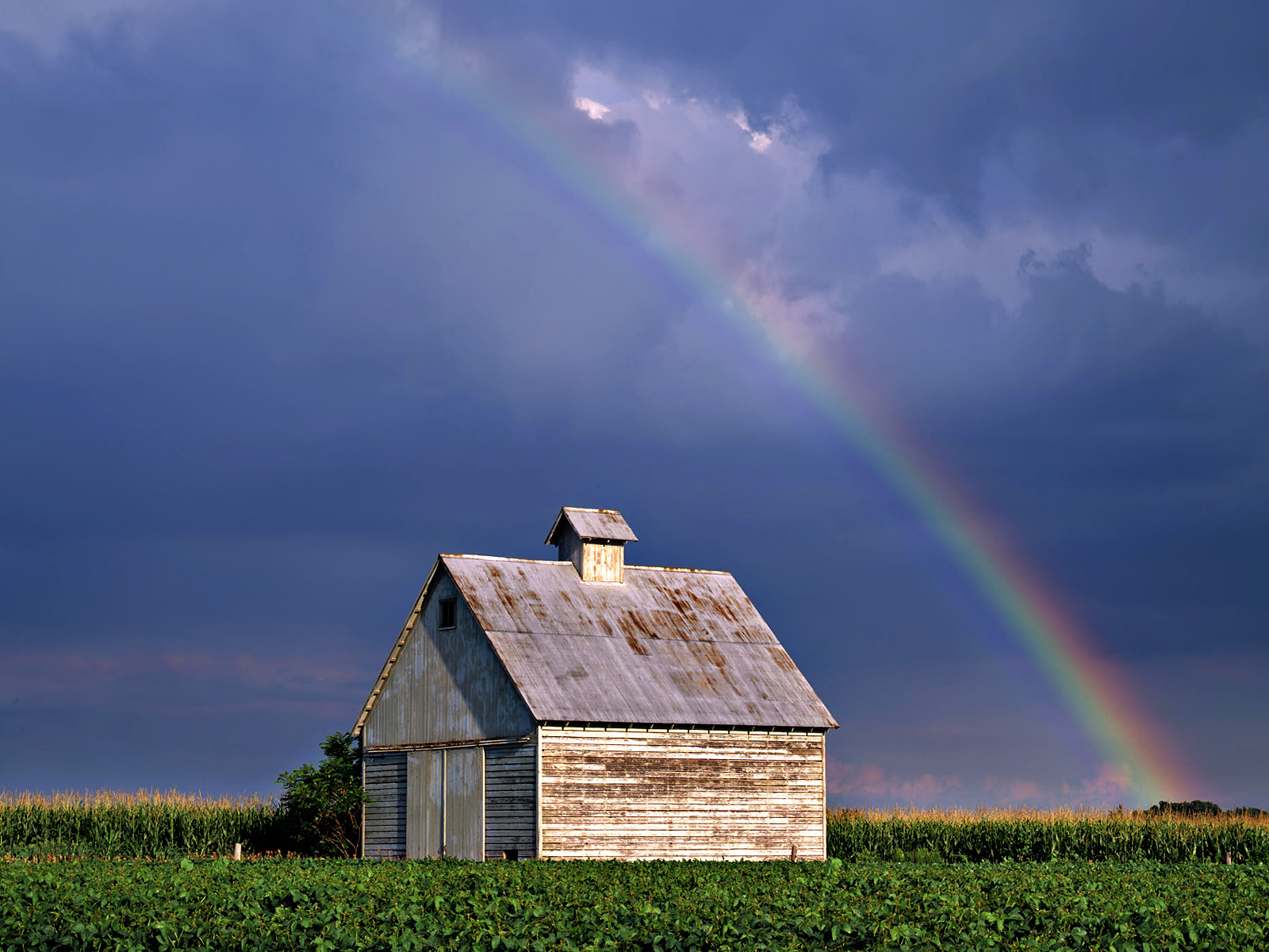 Rainbow Farm Field Illinois wallpaper and Im Sure Jonah Goldberg 1600x1200