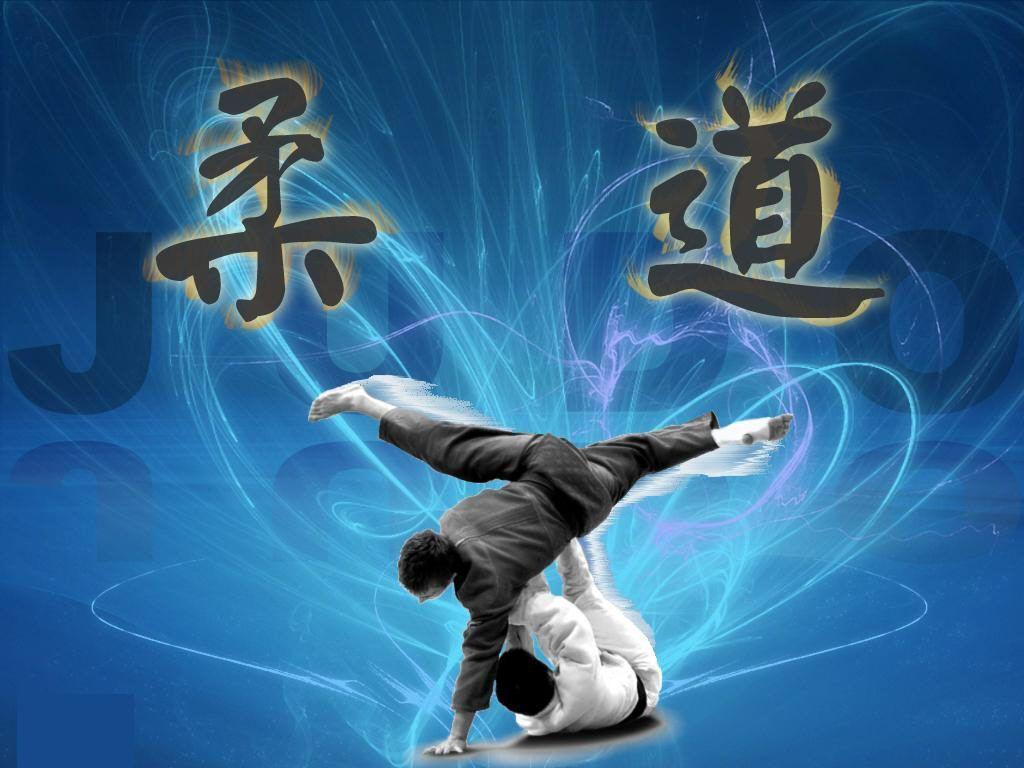 Judo Wallpapers 1024x768
