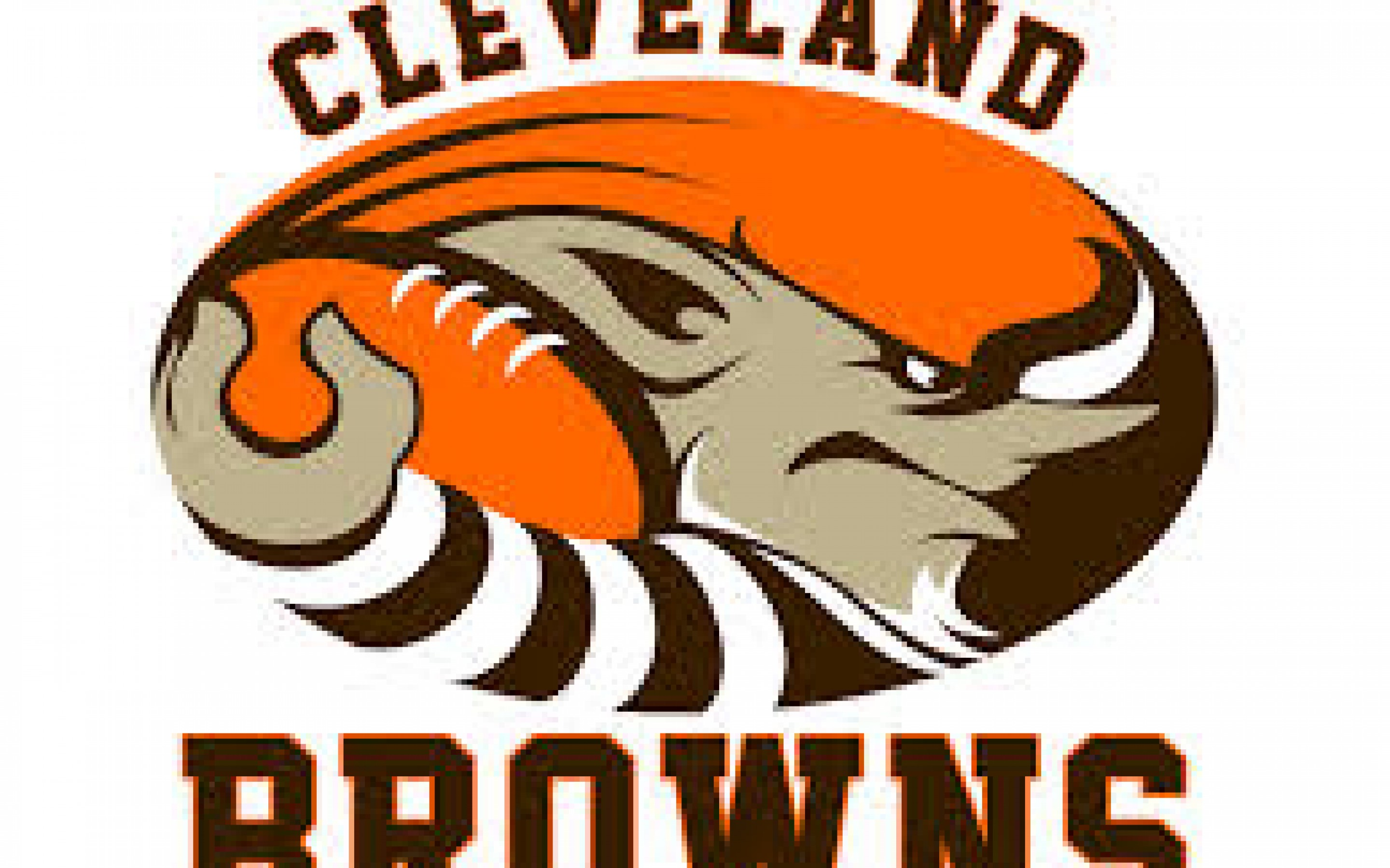 Cleveland Browns Wallpaper 2014 Sky HD Wallpaper 2880x1800