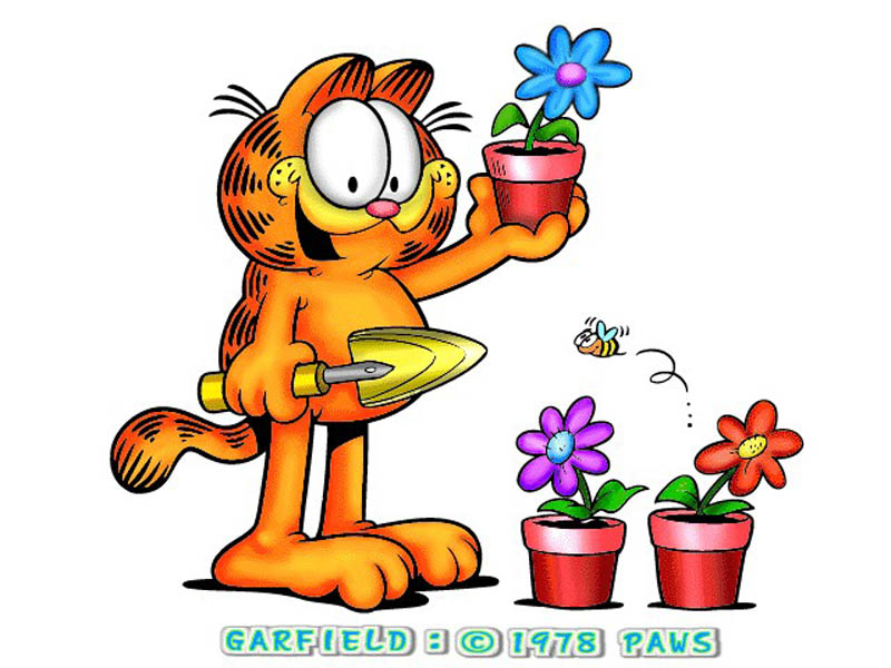 Garfield Wallpapers 800x600