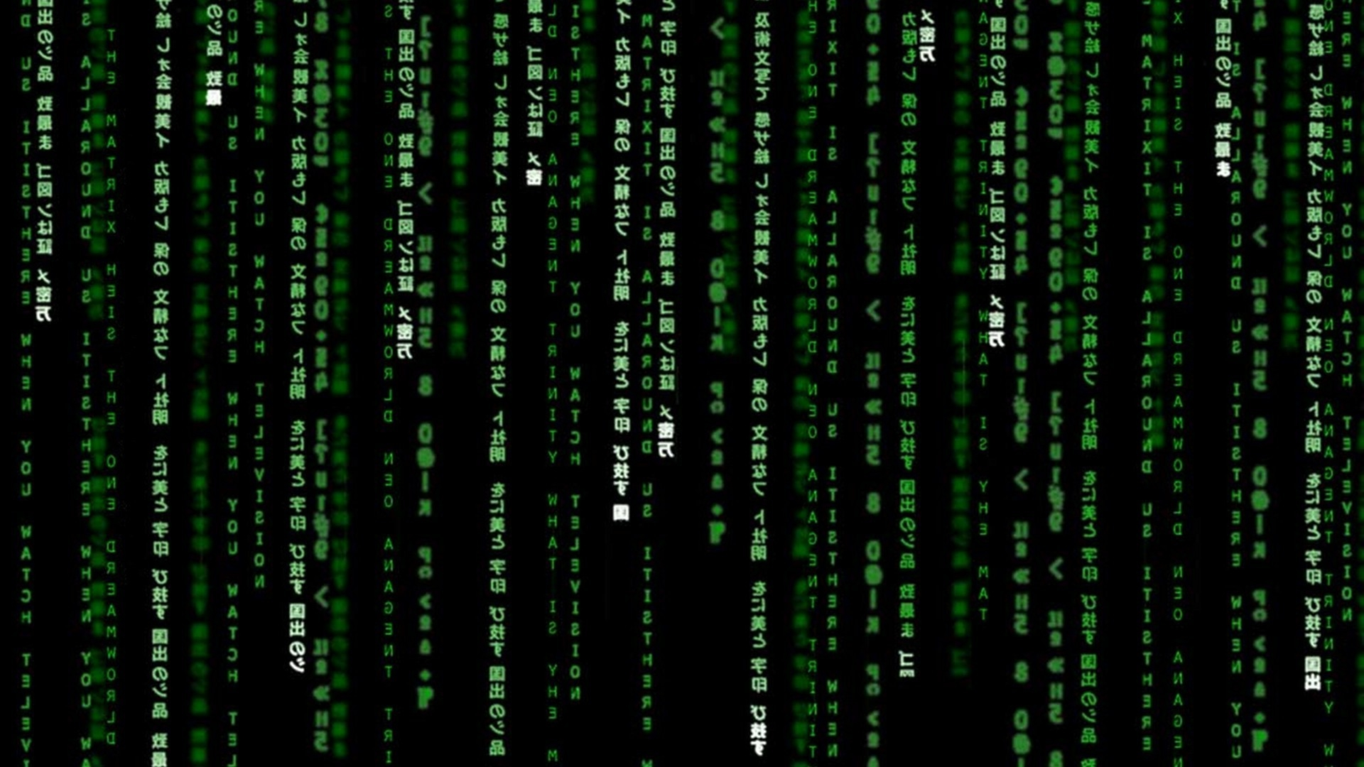 The Matrix Wallpaper - WallpaperSafari