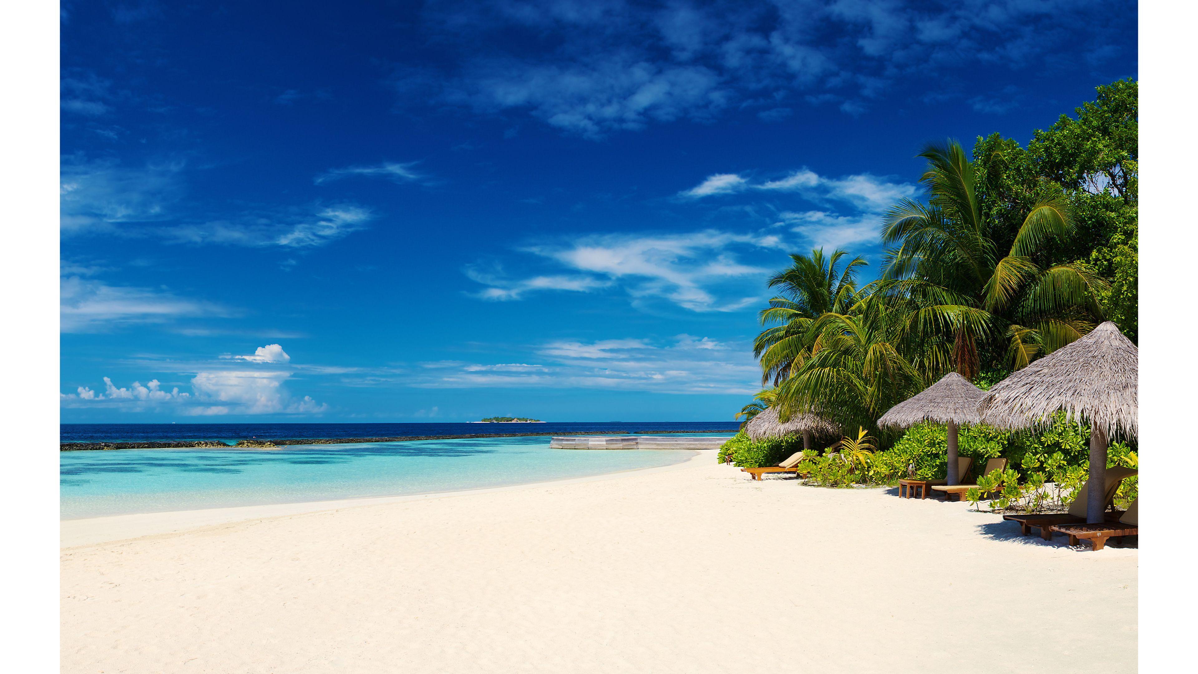 Free Caribbean Beach Wallpaper - WallpaperSafari