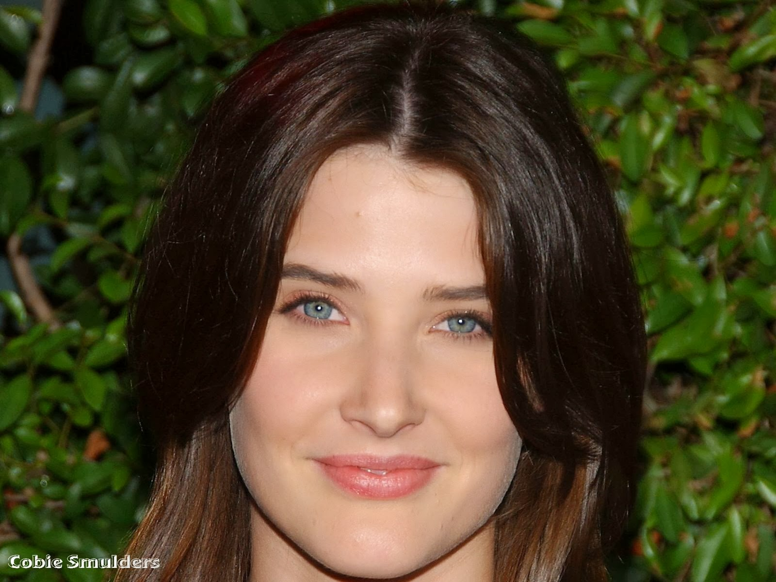 Cobie Smulders HD Wallpaper Prime Wallpapers 1600x1200