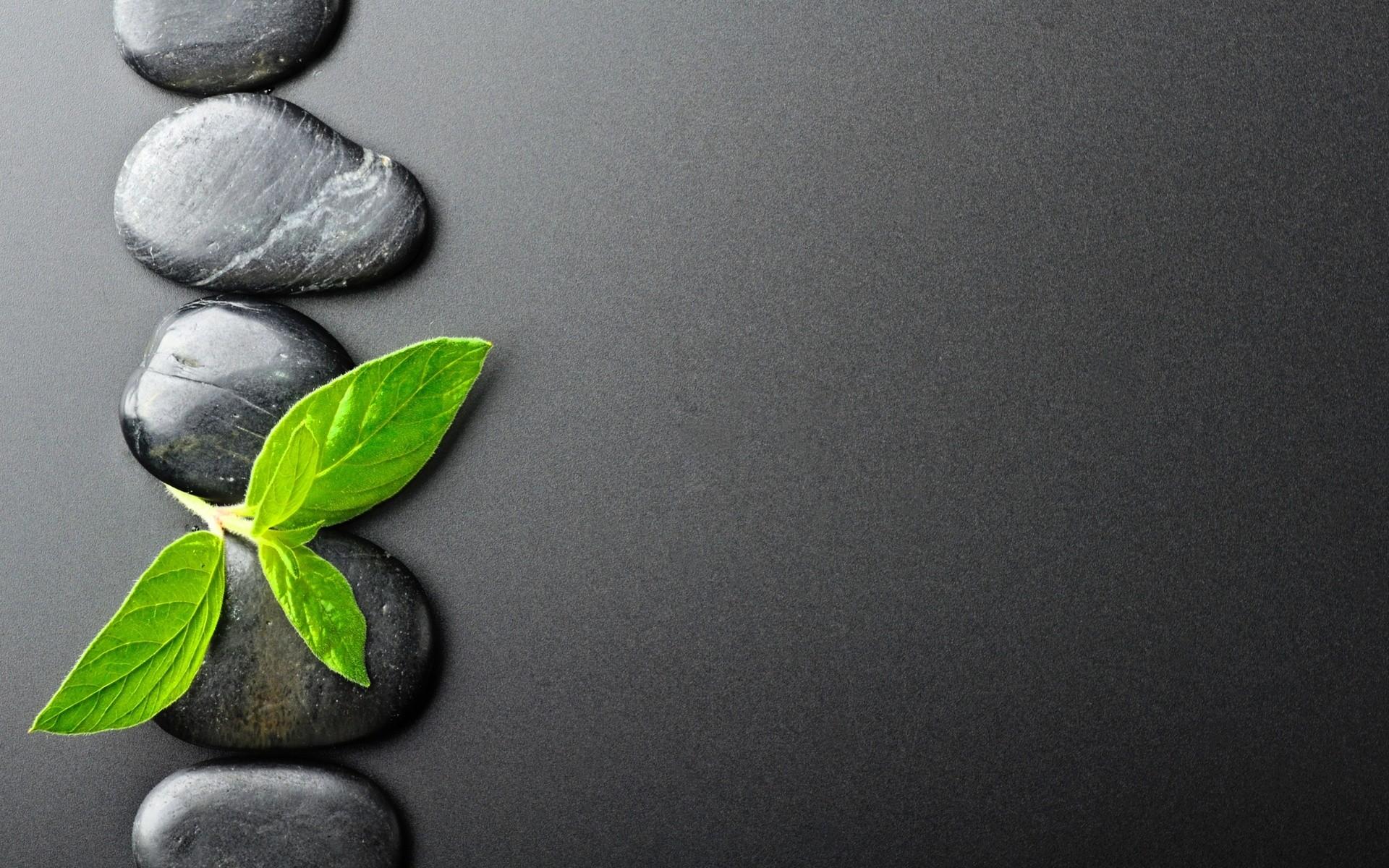 Amusvi Zen Download Wallpaper