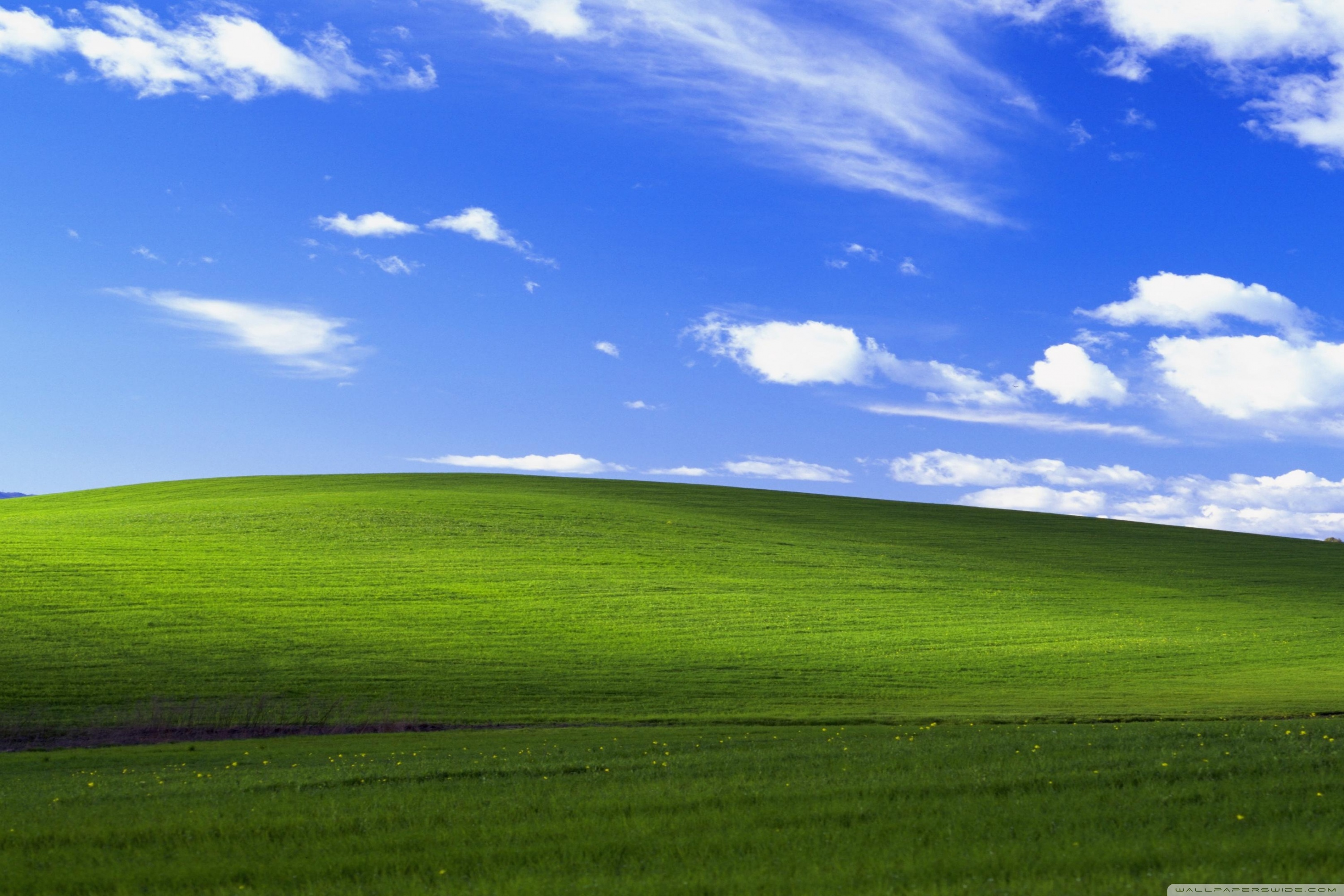 Windows XP Ultra HD Desktop Background Wallpaper for 4K UHD TV 3000x2000