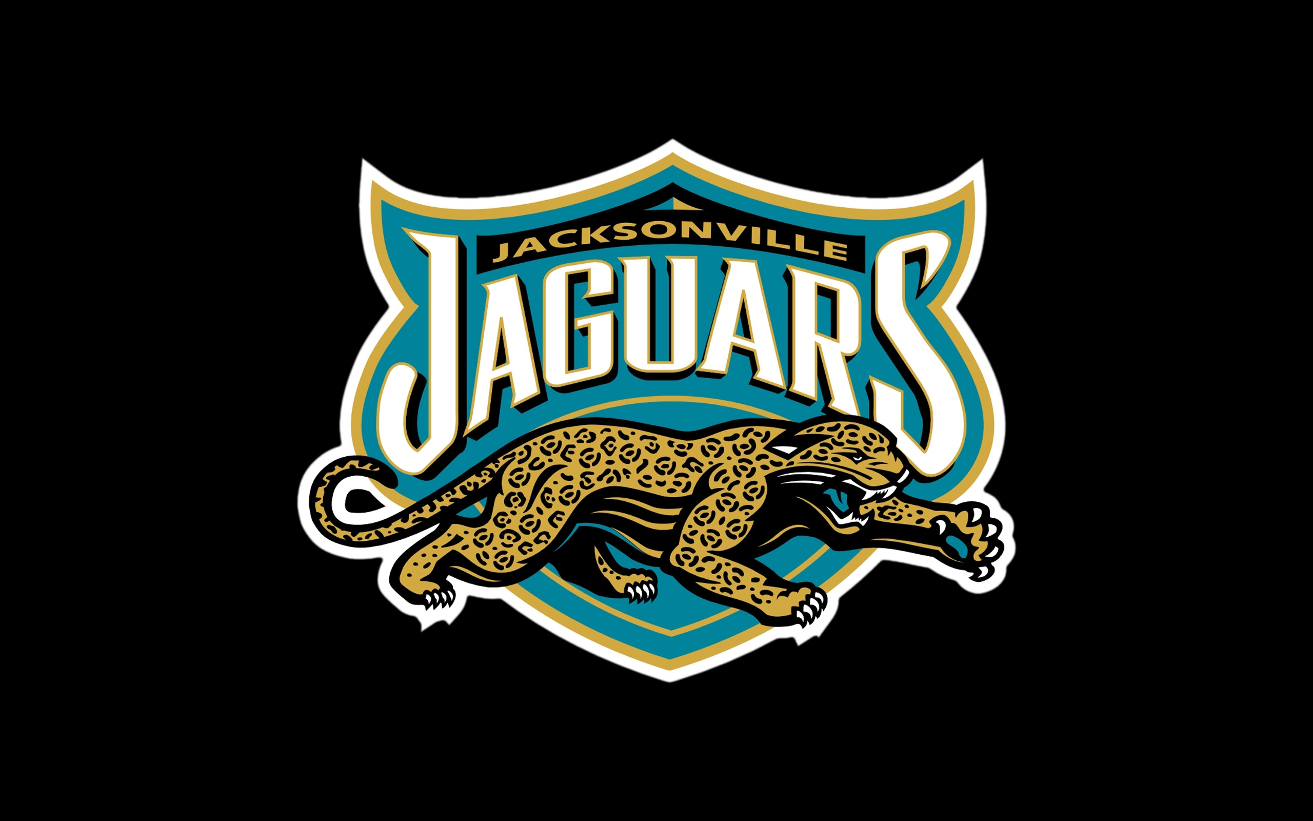 JACKSONVILLE JAGUARS nfl football rw wallpaper 2560x1600 157801 2560x1600