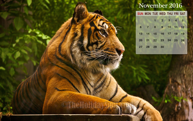 November Calendar Wallpaper 2016 2880x1800