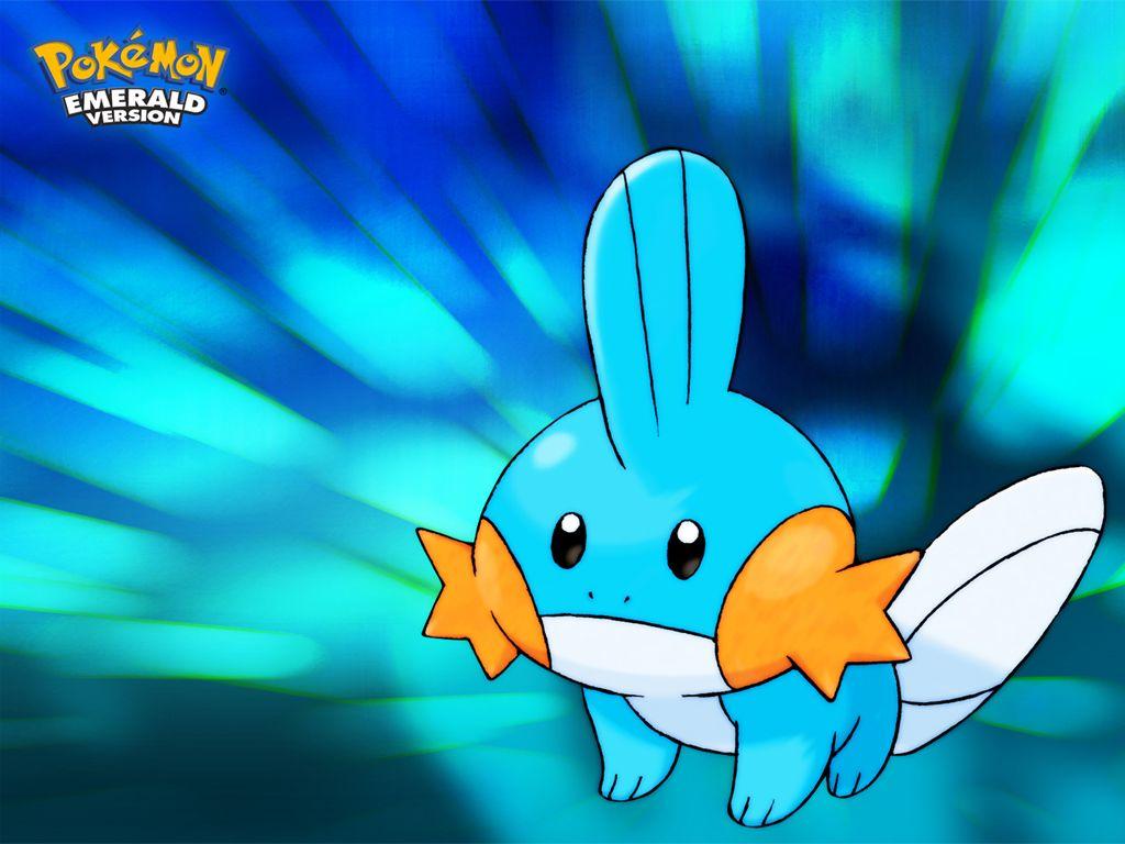 cute mudkip water pokemon wallpaper download hd HD 1024x768
