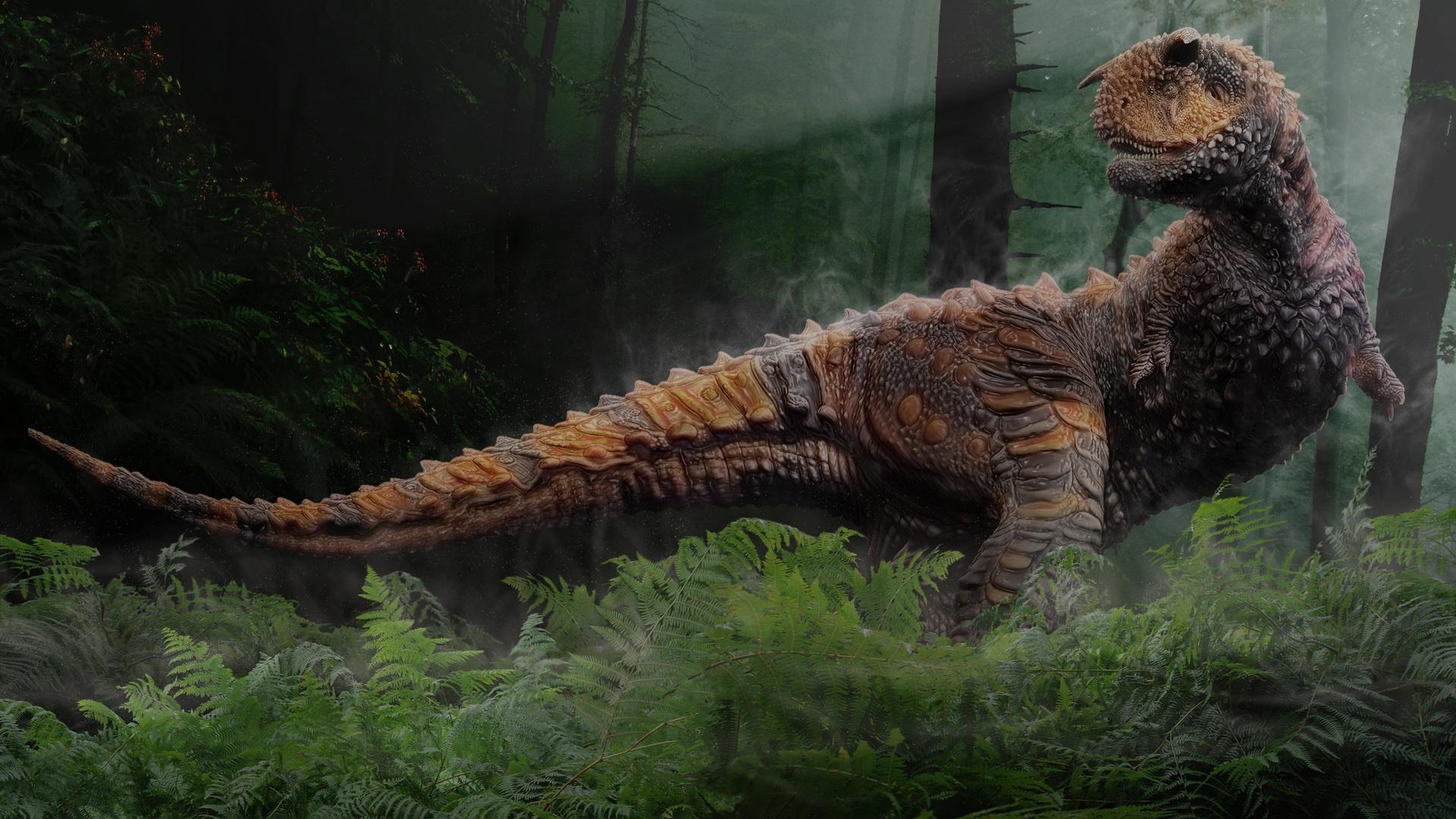 animal dinosaur backgrounds wallpapersjpg 1920x1080