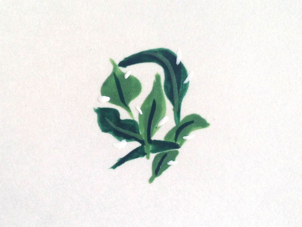 Beverly Hills Hotel Banana Leaf Wallpaper Nails   xoVain 620x465