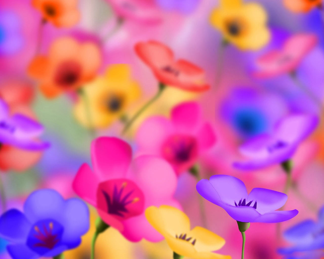 Pretty Colorful Backgrounds 1280x1024