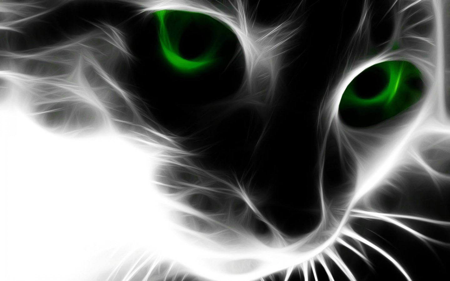 Cats Wallpapers Catfor To Download More Abstract Wallpaper 1440x900
