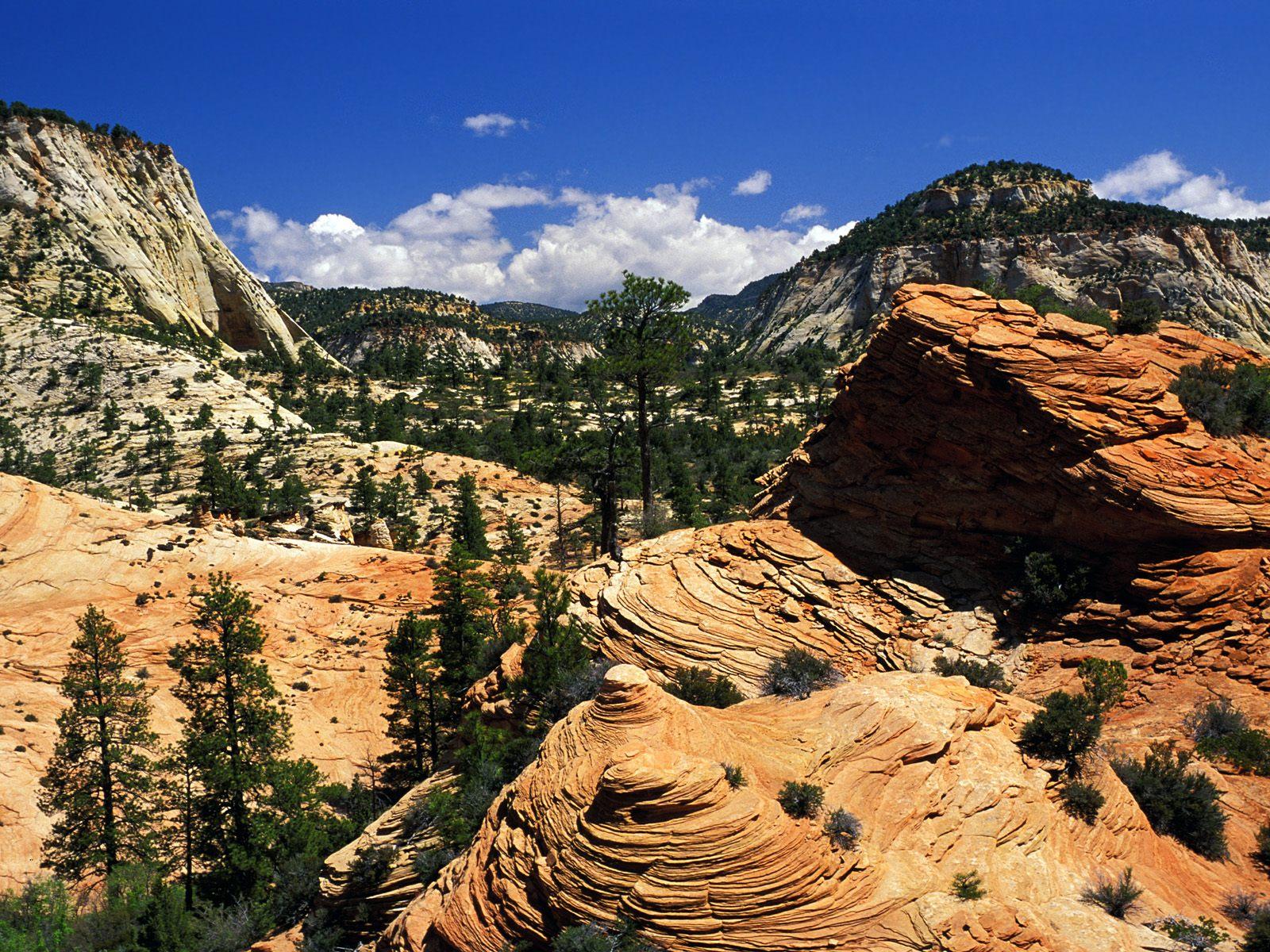 Zion national park wallpaper Wallpaper Wide HD 1600x1200