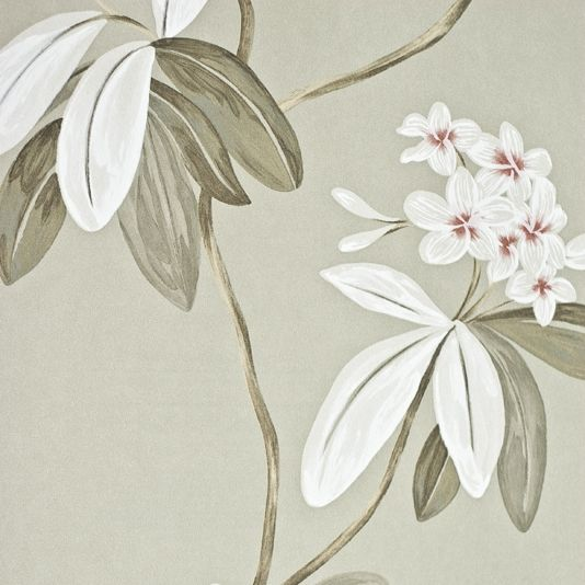 Oleander Floral Wallpaper Contemporary large floral print wallpaper on 534x534