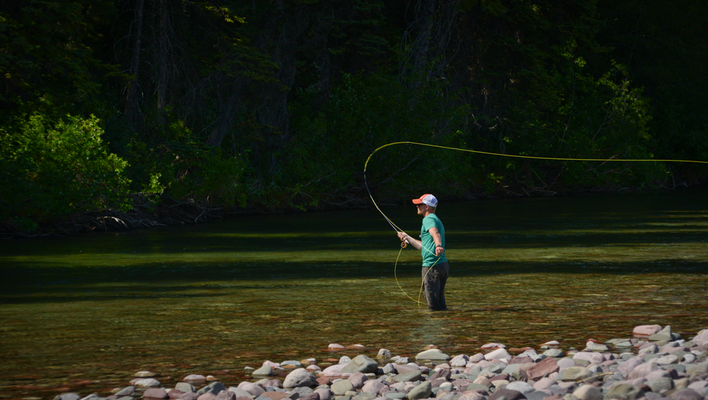 trout fly fishing wallpaper - photo #38