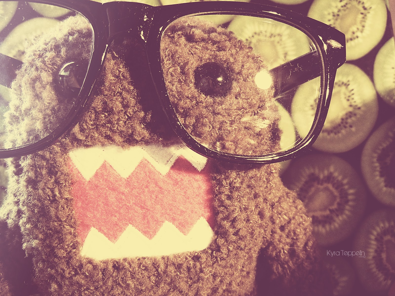 Wallpapers Domo 1600x1200