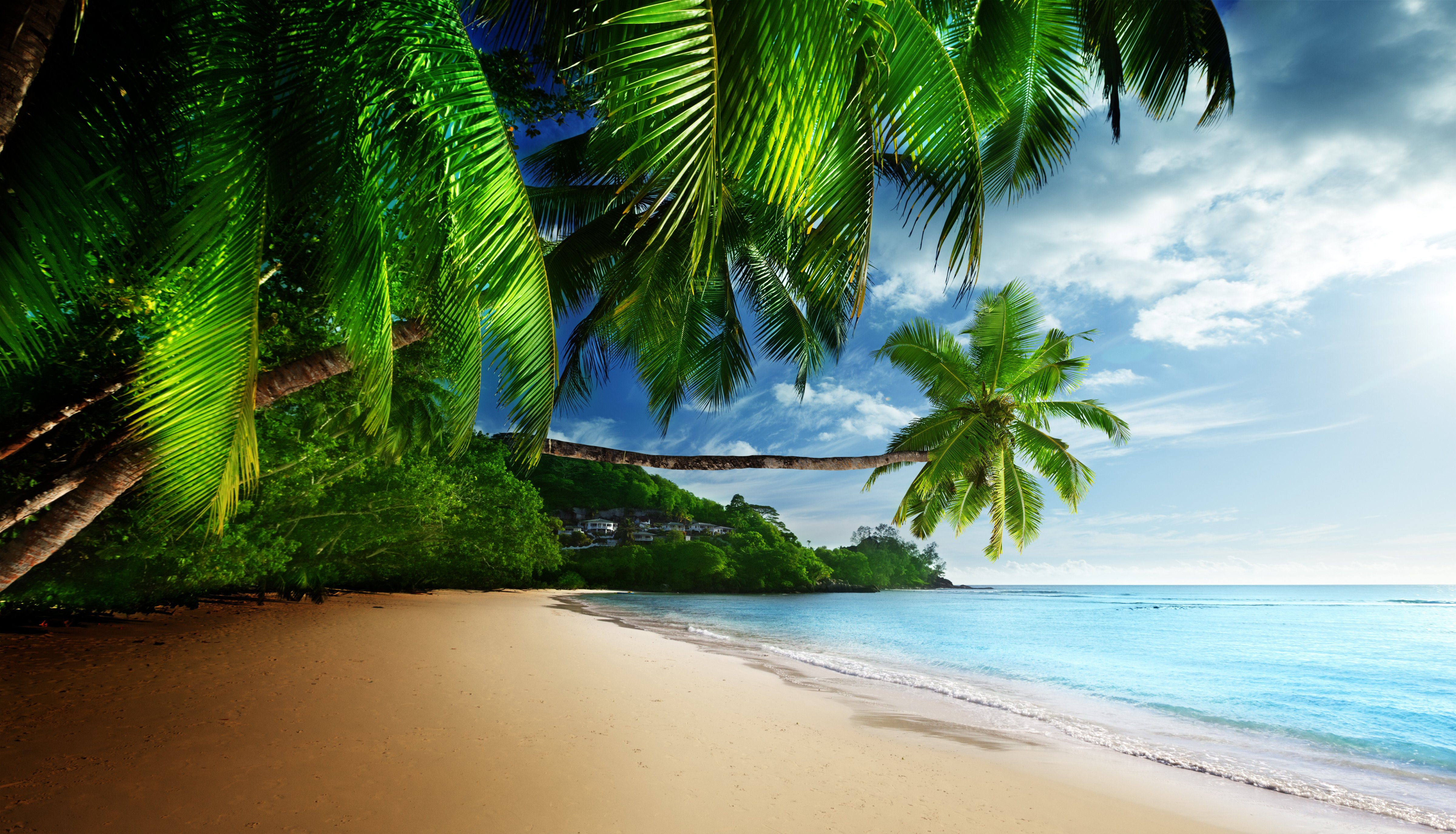 Beach Desktop Background Latest Hd Wallpapers 4800x2751
