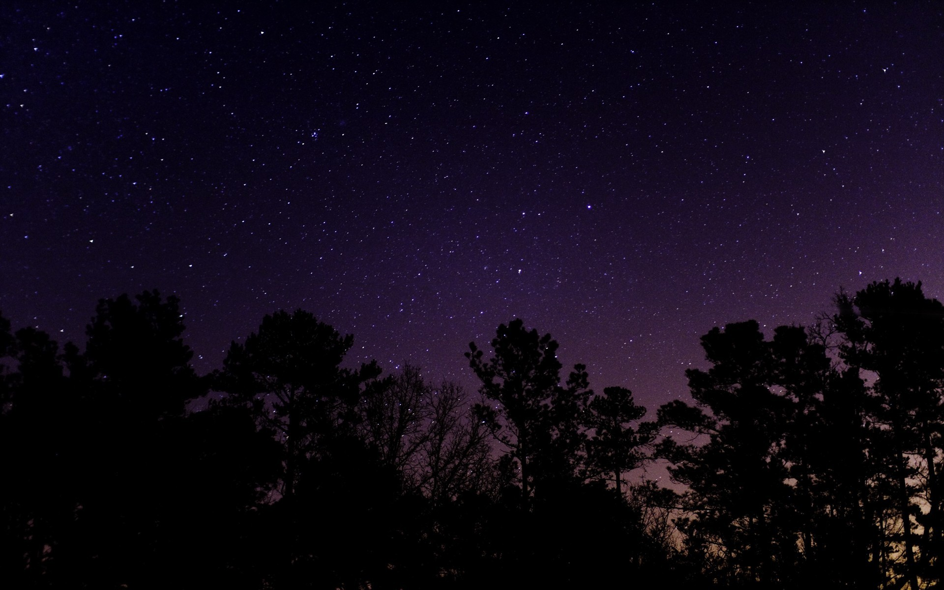 Pics Photos   Starry Night Sky Wallpaper 1920x1200