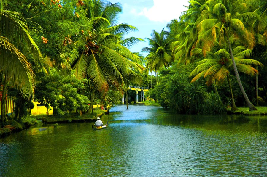 backwaters of alappuzha in kerala1jpg 900x598