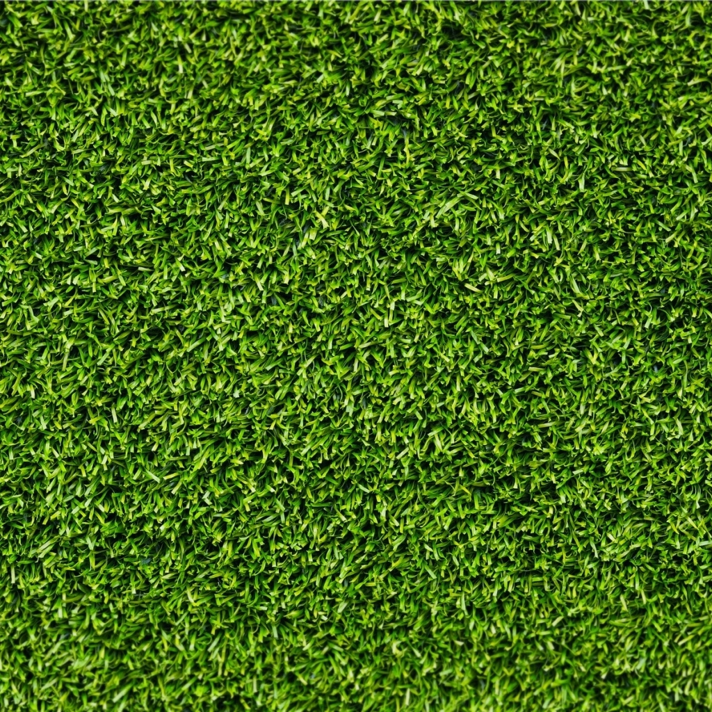 free download download green grass texture wallpaper in textures wallpapers with all 1024x1024 for your desktop mobile tablet explore 70 green grass wallpaper hd grass wallpaper green grasscloth wallpaper green grass texture wallpaper