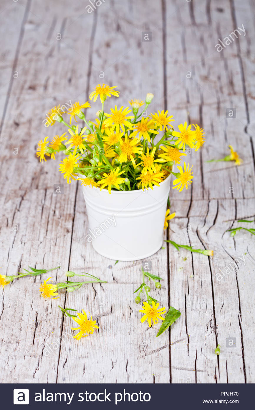 wild yellow flowers in bucket on rustic wooden background Stock 866x1390