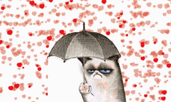 Valentine 39 s Day Grumpy Cat Memes 600x359