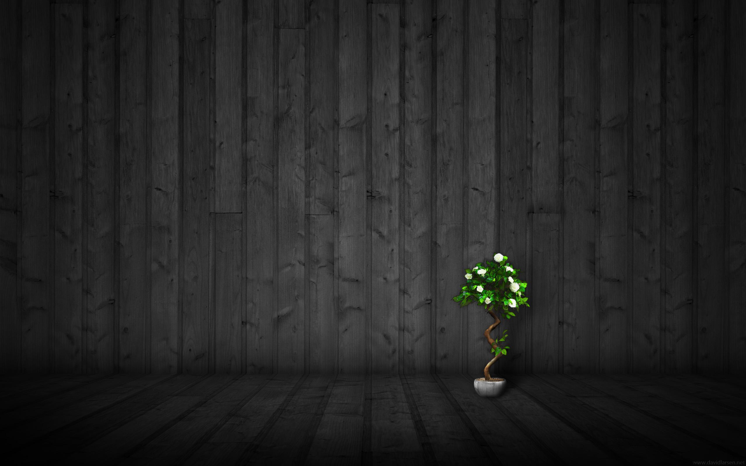 Dark Wood 2 HD Wallpaper Theme Bin   Customization HD Wallpapers 2560x1600